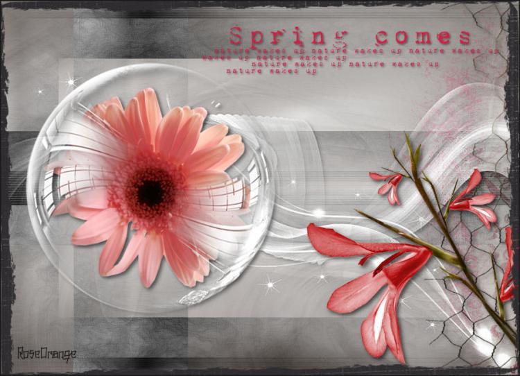 03032012-spring.jpg