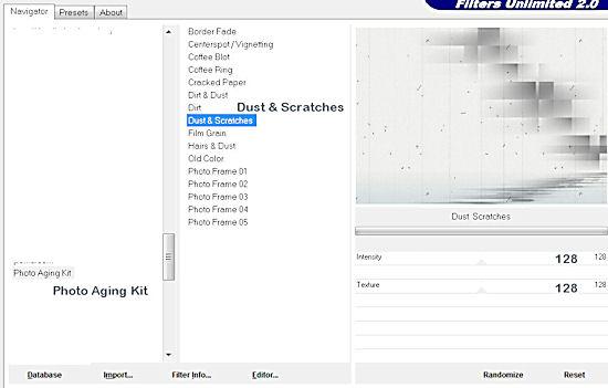 ro-noemie-photoagingkit-dust-scratches.jpg