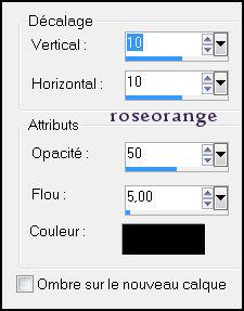 roseorange-purple-ombreportee.jpg